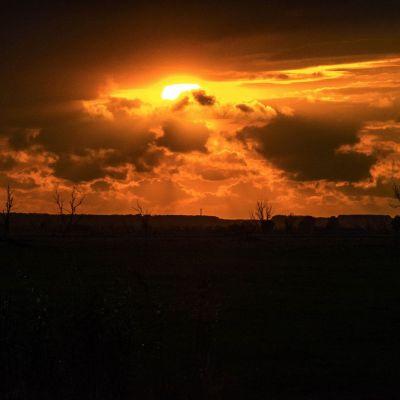 <strong>Mooie lucht met de zon die onder gaat boven de Oostvaardersplassen</strong>