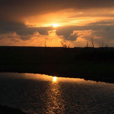 <strong>Mooie avondlucht in de Oostvaardersplassen</strong>
