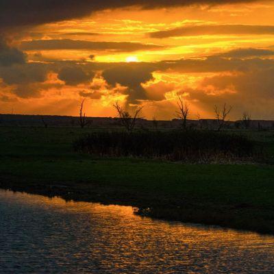 <strong>Mooie avondlucht boven de Oostvaardersplassen</strong>