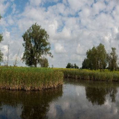 <strong>Panorama van de Oostvaardersplassen (wandeling zeearendroute)</strong>