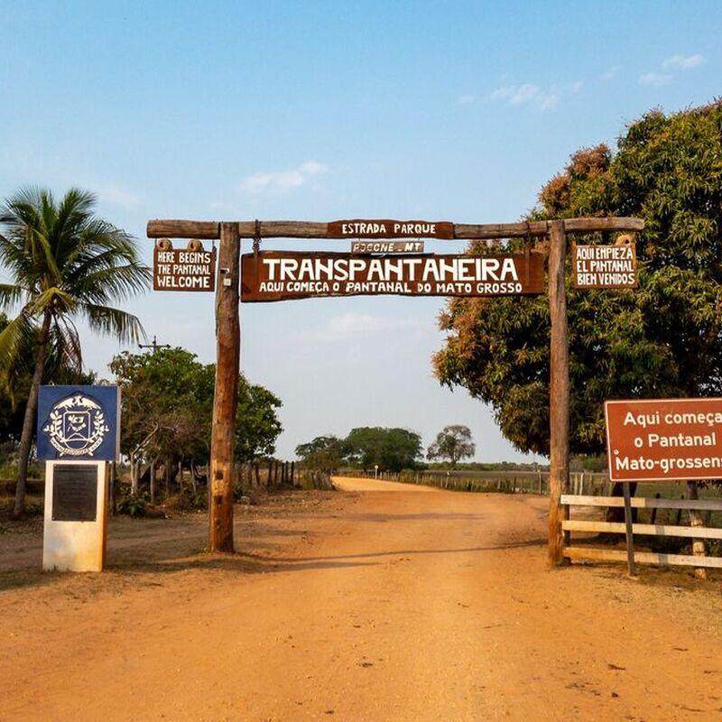 <strong>(Pantanal Mato Grosso Brazilië)</strong>
