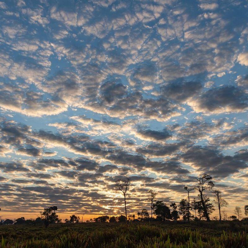 <strong>Zonsopkomst (Pantanal Mato Grosso Brazilië)</strong>