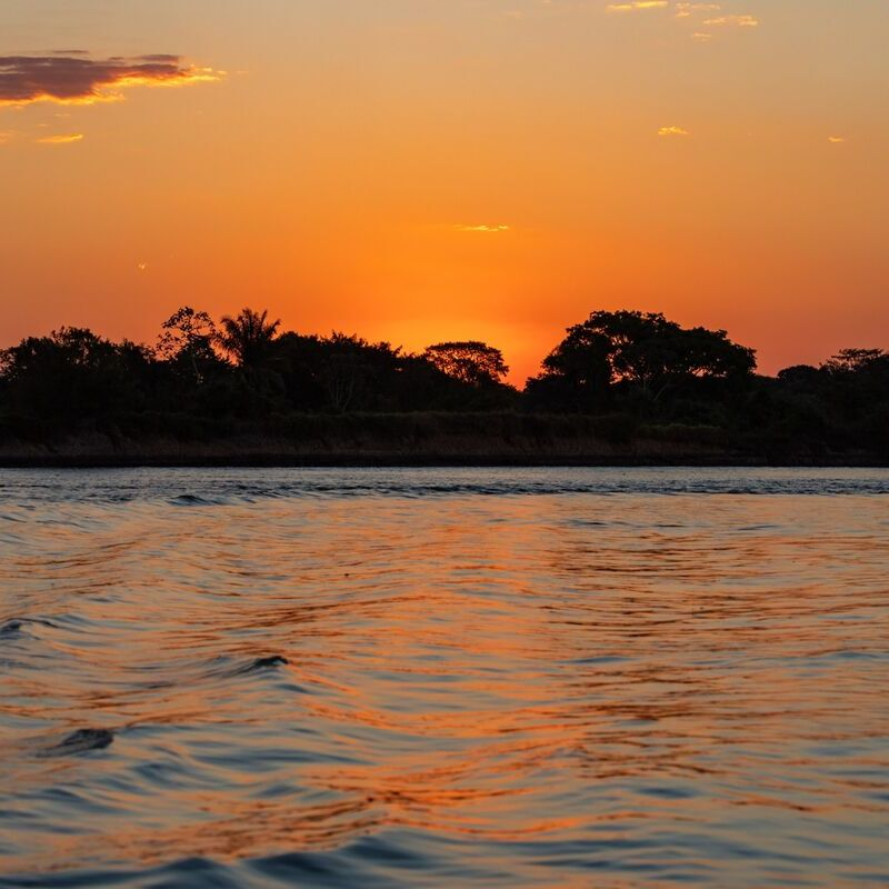 <strong>Zonsondergang (Pantanal Mato Grosso Brazilië)</strong>