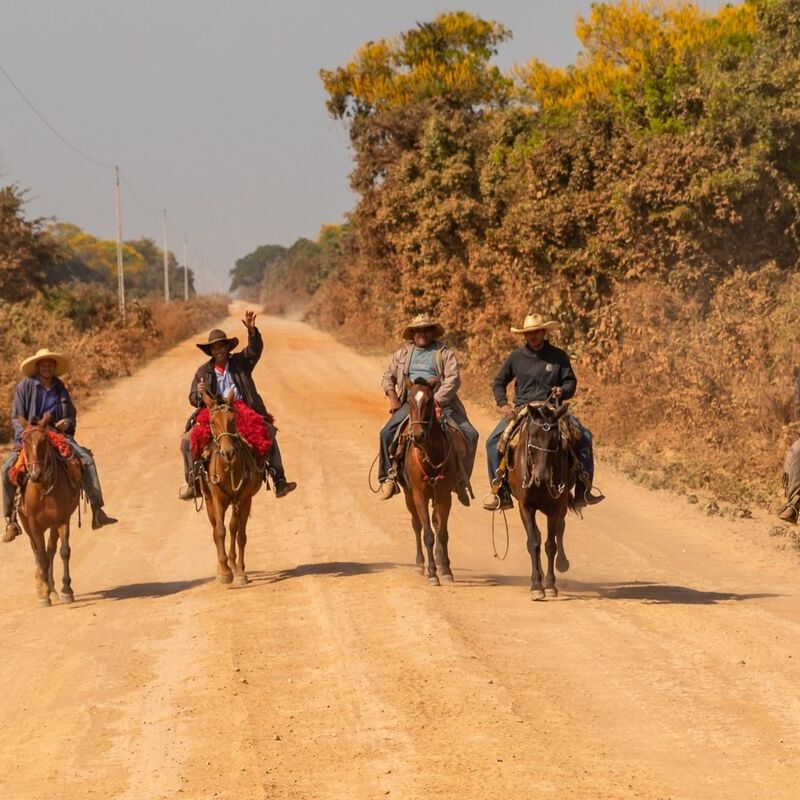 <strong>Cowboys (Pantanal Mato Grosso Brazilië)</strong>