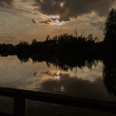 <strong>Mooi avondlicht in de Oostvaardersplassen</strong>